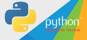Python for Teens