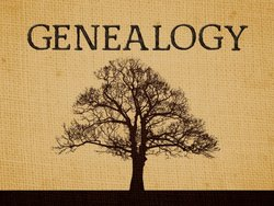 Genealogy: It'
