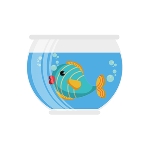 Mason Jar Aquariums