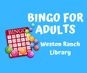 Bingo for Adults