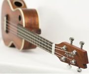 Two Ukulele Classes